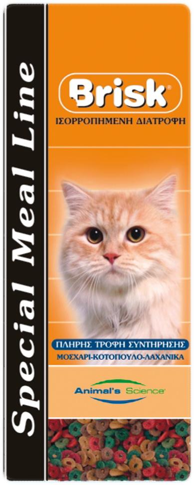 Brisk Γάτας Ring Shape